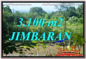 TANAH DIJUAL di JIMBARAN Untuk INVESTASI TJJI113